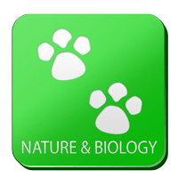Nature and Biology Quiz - Quiz about Nature and Biologi